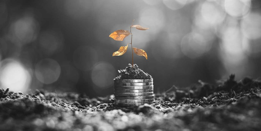 Une plante fanée sur un tas de pièces de monnaie pour symboliser l'échec.