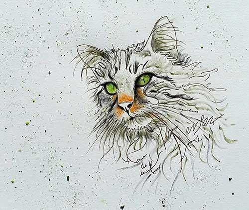 Aladin le malin est un chat intelligent qui écrit des chroniques pour la rubrique Animaux du magazine Découverte