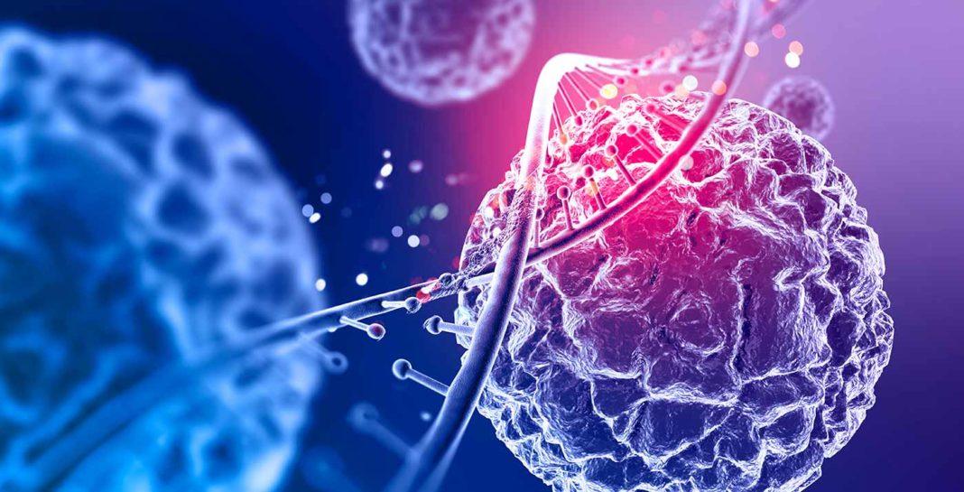 Cellules humaines dans le corps. Décodage biologique : les maladies ont-elles un sens?