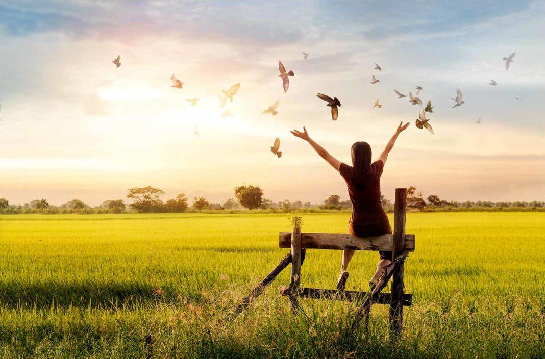 Une jeune femme tend les bras vars les oiseaux dans un pré - découverte magazine