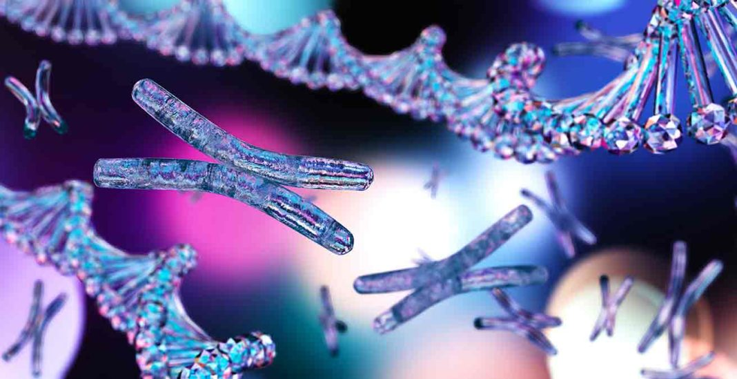 Médecine énergétique, chromosomes et ADN.